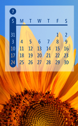 2011 Calendar Digital Stamps (Photoshop brushes)