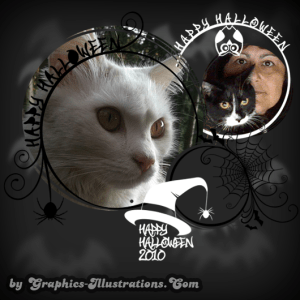 Cats, Photoshop Brushes, Free Downloads and More…