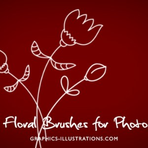 Photoshop brushes, vector graphics, transparent PNG's – all in one pack: Flowers 2