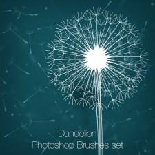 Dandelions Photoshop Brushes set