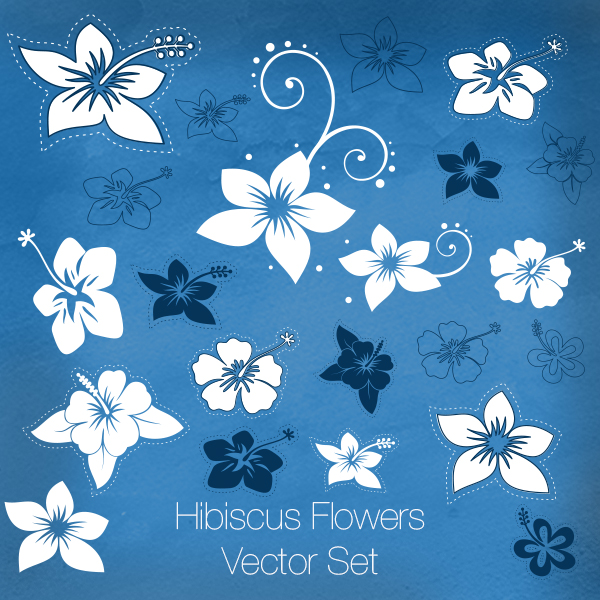 Hibiscus Flowers Vector Set