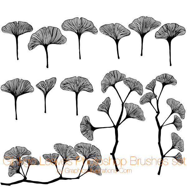 Ginkgo Leaves Photoshop Brushes set, Commercial Use