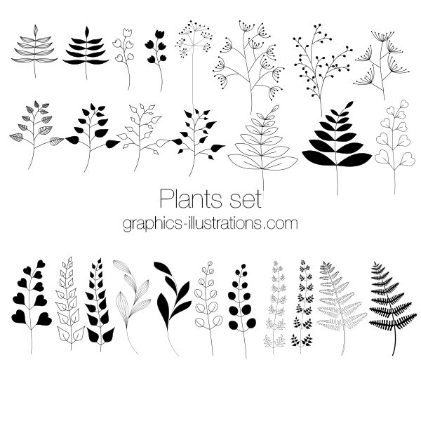 Plants Photoshop brushes, Plants clip art, vectors and PNGs
