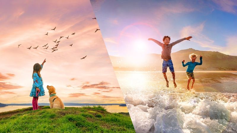 Introducing Adobe Photoshop Elements 2021 & Premiere Elements 2021