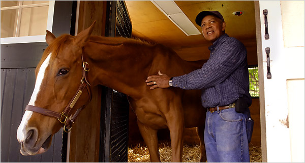 Genuine Risk at 30 in 2007, relaxing at Newstead Farm/photo from NewYorkTimes
