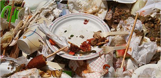 https://i0.wp.com/graphics8.nytimes.com/images/2008/05/22/health/food_533.jpg