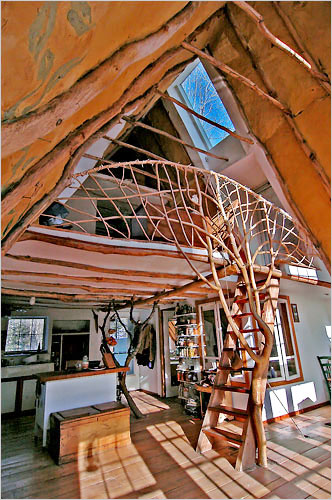 Whole tree architecture - photo by Paul Kelley for New York Times
