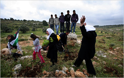 Palestinians headed to plant trees last month in the West Bank, part of a new, nonviolent approach to assert their land claims.