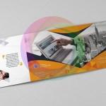 Square-Tri-Fold-Business-Brochure-Template-6.jpg