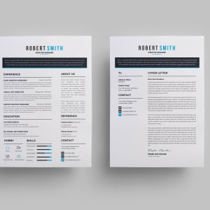Minimalist Sleek CV Design