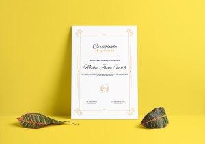 Elegant Certificate Design Templates