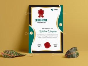 Portrait Certificate