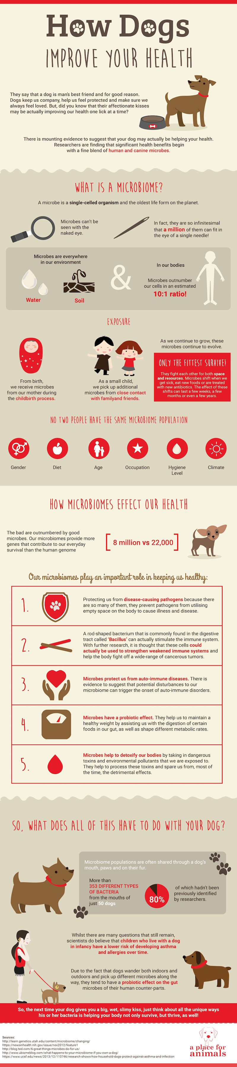 How Dogs Improve Your Health - Infographics