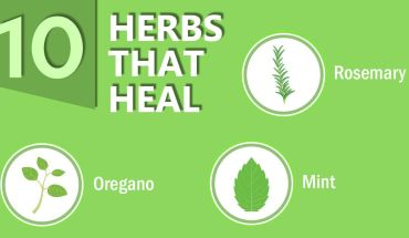 Meet The 10 Herbs That Will Keep You Healthy