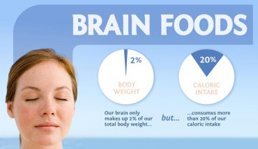 Foods That Are Great For Your Brain - Infographic