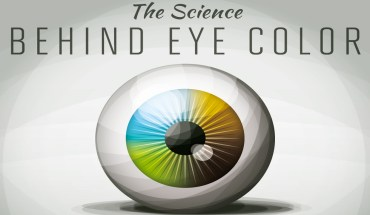 Scientific Explanation Behind The Color Of Your Eyes - Infographic