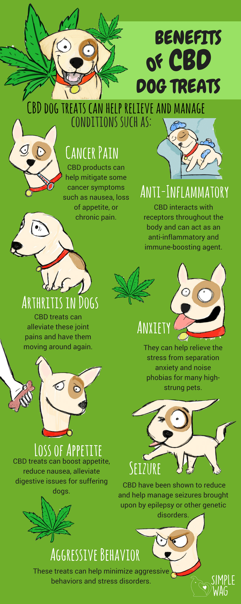 Why CBD Dog Treats Are The Best For Your Dog Infographic