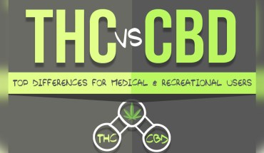 THC or CBD - The Better Choice? - Infographic