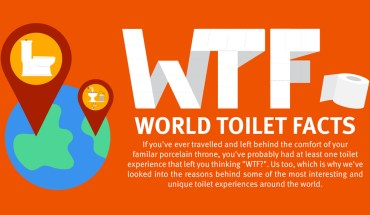 The Most Bizarre Facts About Toilets Around The World - Infographic