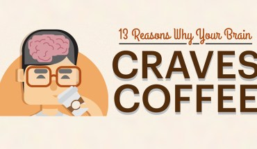 13 Reasons Why Your Brain Craves Coffee - Infographic
