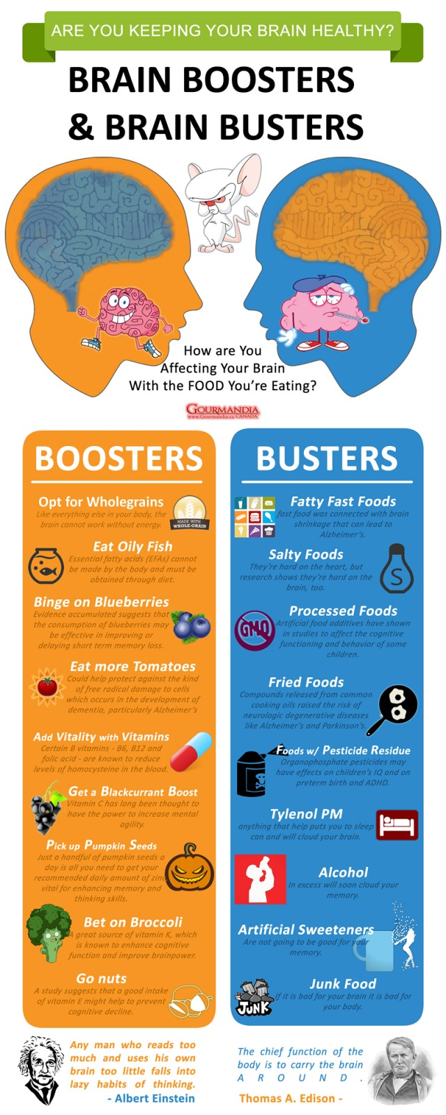 Best and Worst Foods for Your Brain - Infographic