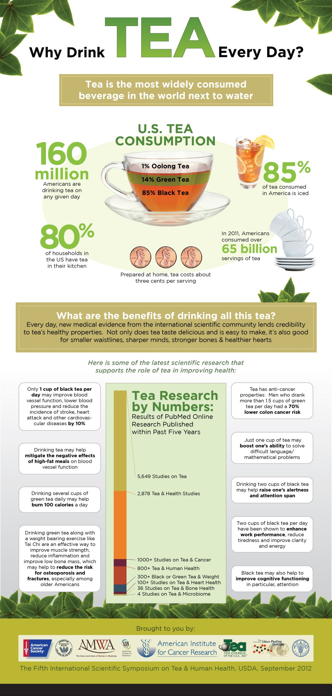 Here's Why You Must Drink Tea Everyday! - Infographic