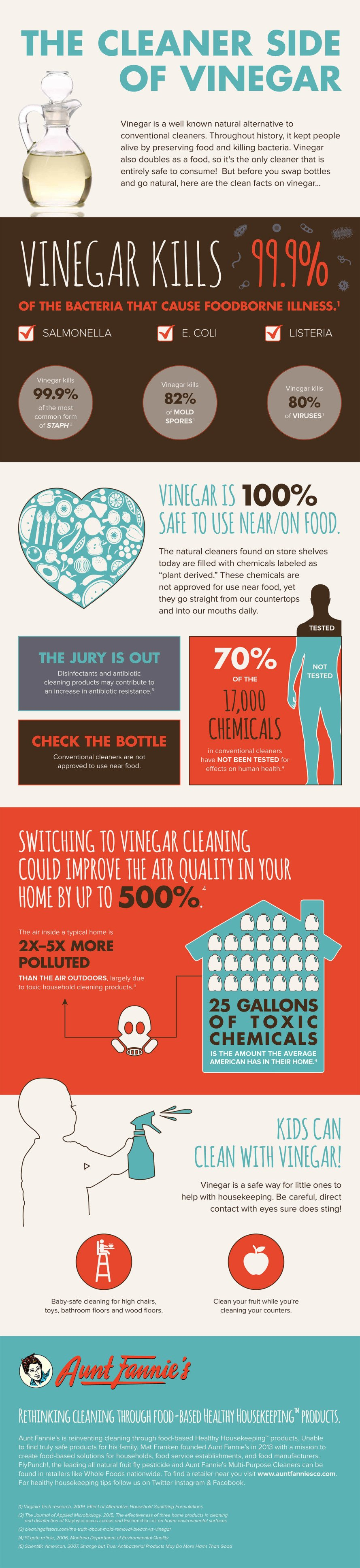 Vinegar: The Clean Facts - Infographic