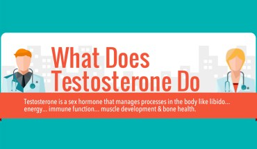 Role of Testosterone in Your Body - Infographic