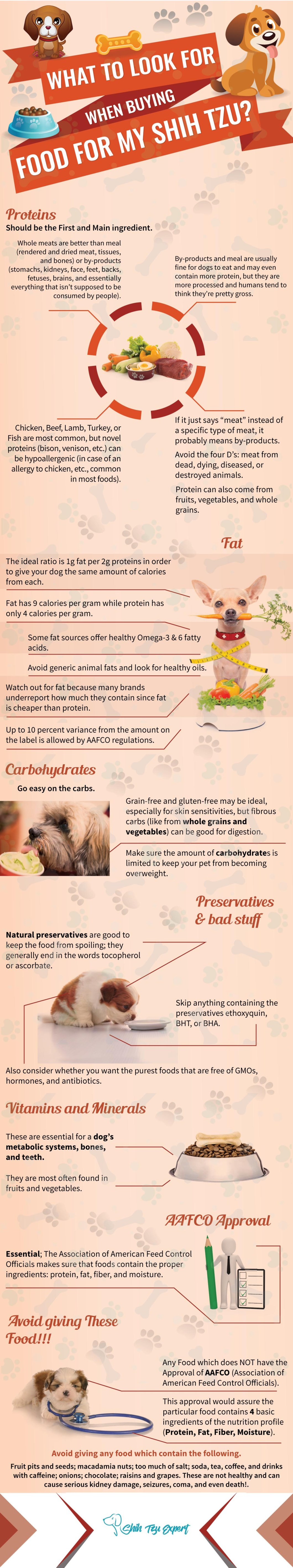 Your Shih Tzu's Diet Plan: What's Important and What to Look For - Infographic