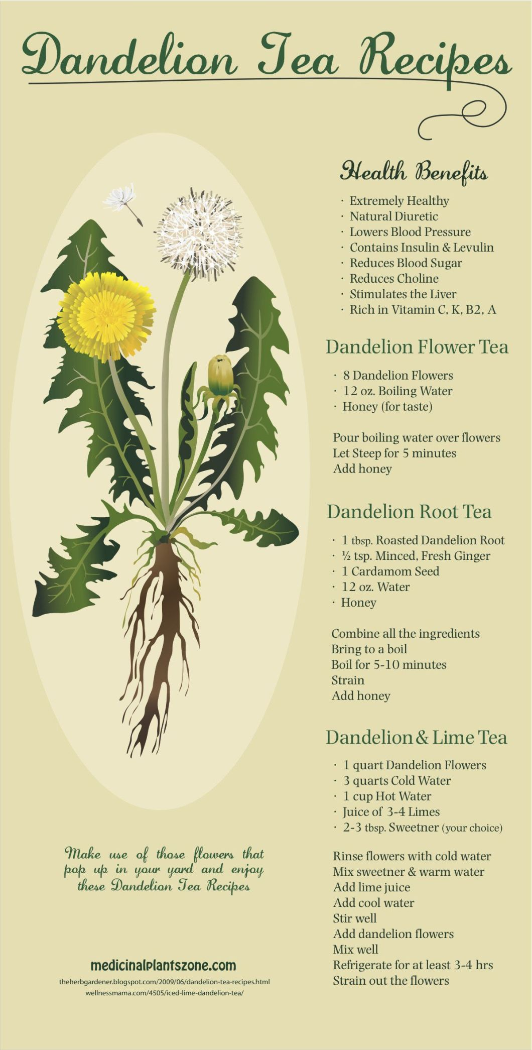 Sip Your Way to Wellness: Dandelion Tea Recipes - Infographic