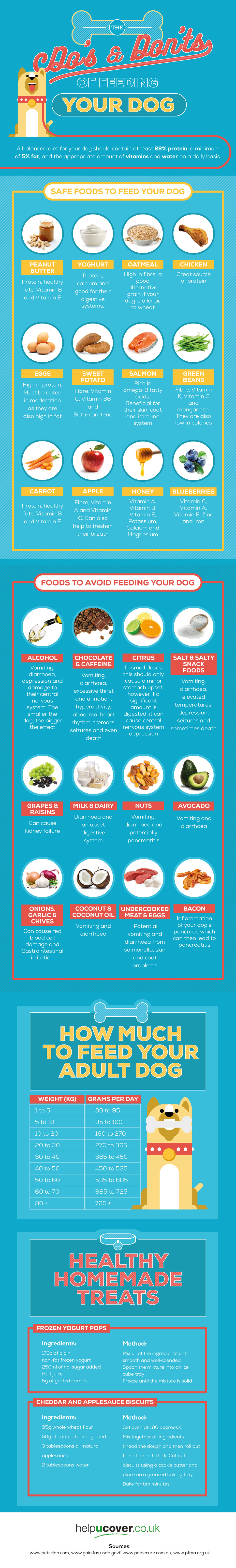 The Comprehensive List of Good & Bad Foods for Your Dog - Infographic