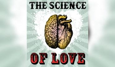'I'm in Hormone-Frenzy': The Scientific Description of Love! - Infographic