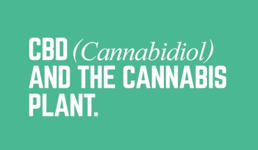 Why Humans Benefit from Cannabidiol - Infographic