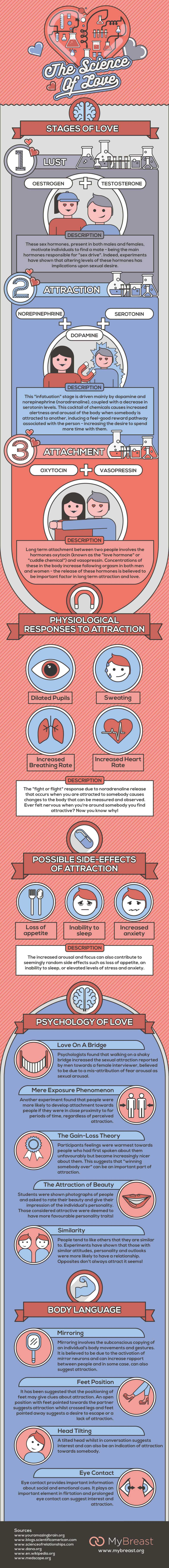 I am in Oxytocin: If Love Had to be Described in Scientific Language! - Infographic