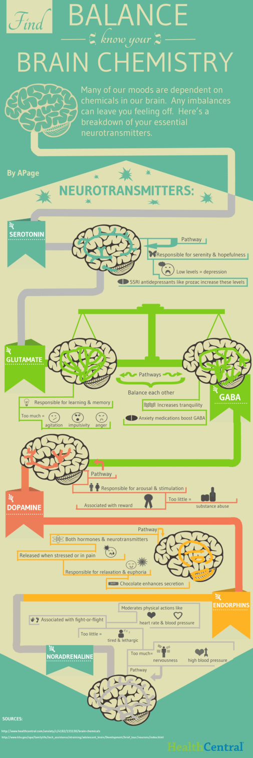 Brain Chemistry: A Fine Balancing Game - Infographic
