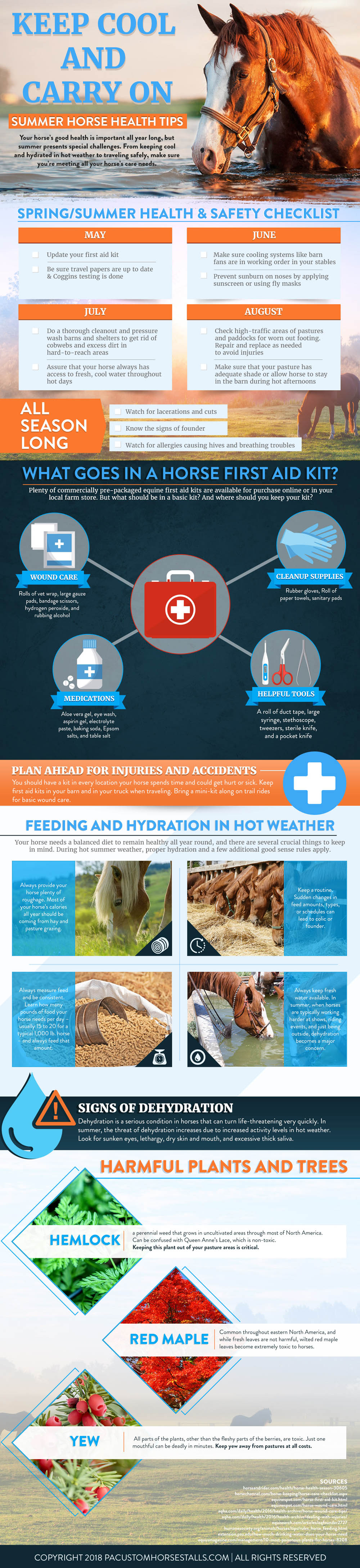 How to Care for Your Horse in the Hot Summer Months - Infographic