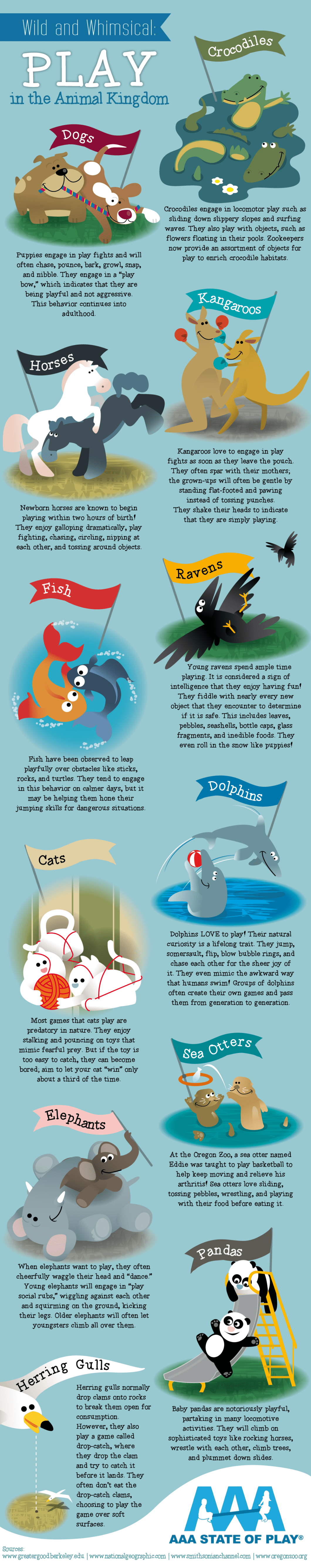Animal Playtime: Yes, They Play Too! - Infographic