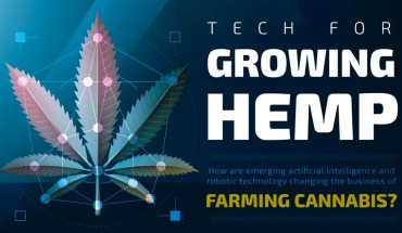 AI and Robotics for Growing Cannabis - Infographic