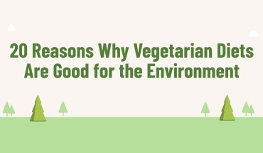 Eat Vegetarian and Save the Environment: 20 Reasons How - Infographic