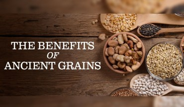 Why Are Ancient Grains More Beneficial? - Infographic