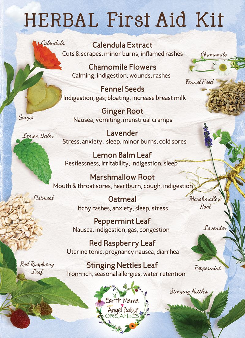 DIY: How To Build Your Own Herbal First Aid Kit