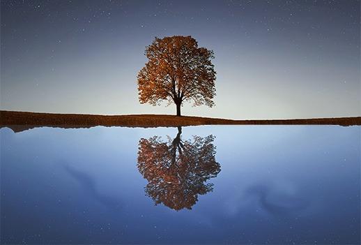 reflection_edit