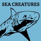 sea-creatures-photoshop-shapes-1