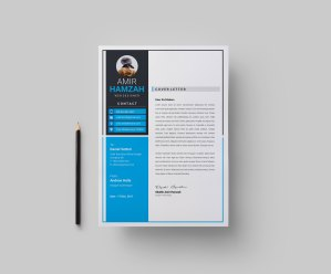 Elegant CV Design Template