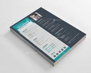 Elegant Resume CV Design Templates