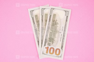 Three Hundred Dollars Isolated on Pink