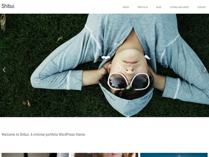 free-minimalist-wordpress-theme