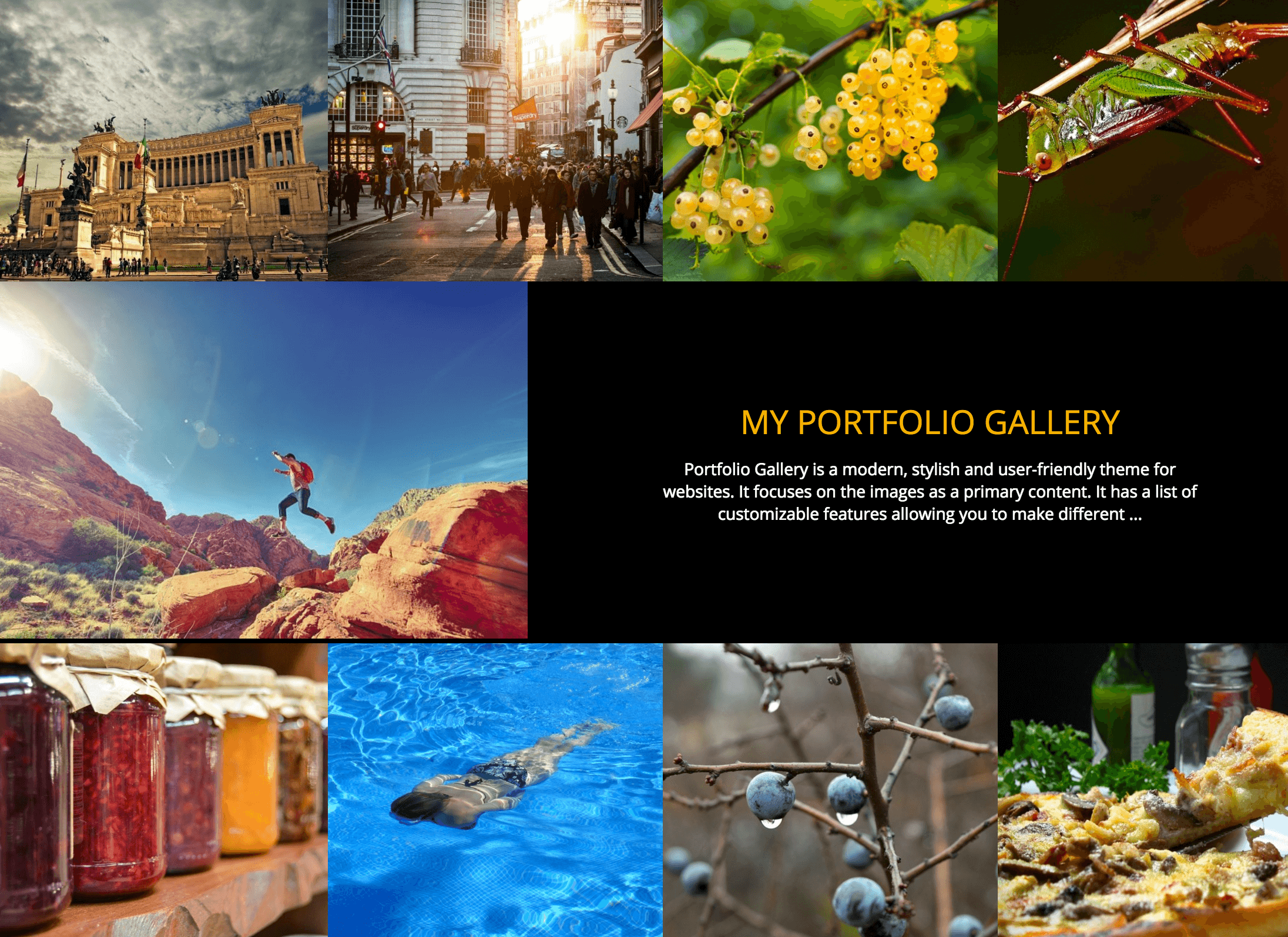The Portfolio Gallery theme.