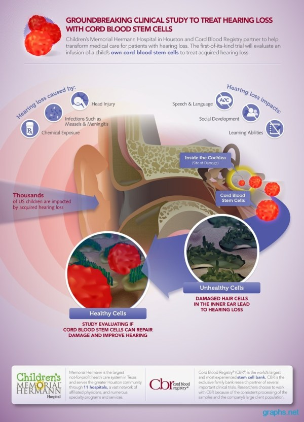 Stem Cell Cure Hearing Loss Infographic