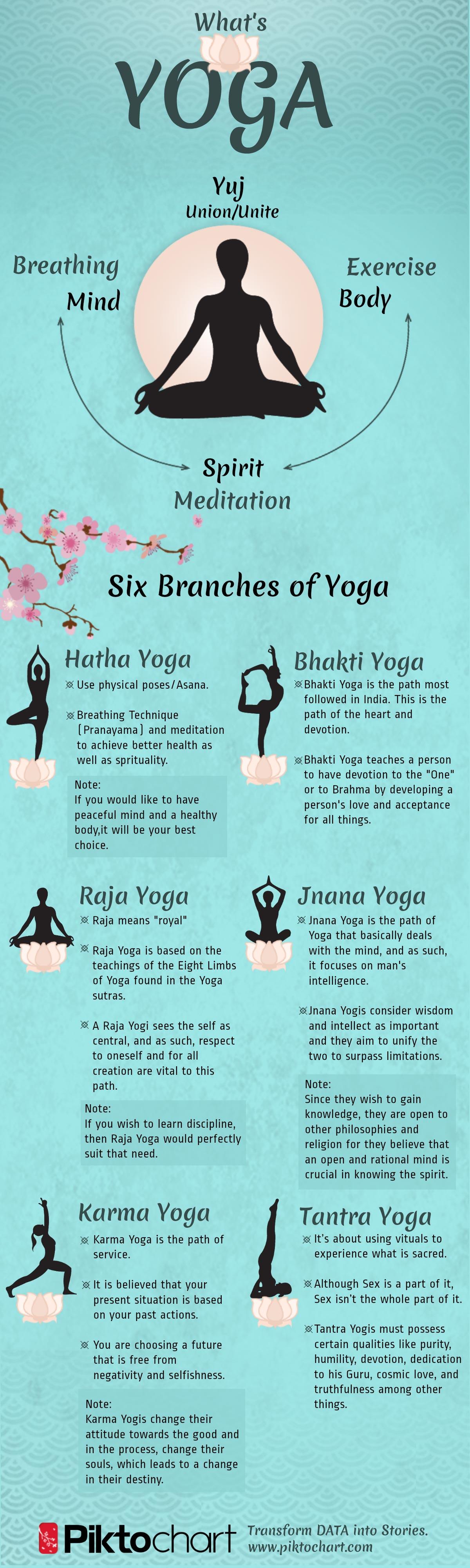 Raja Yoga The Twisted Monkey